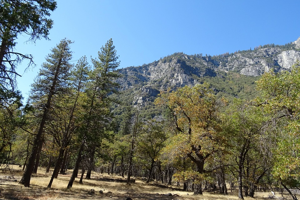 7 Highlight's of California's Sierra Nevadas